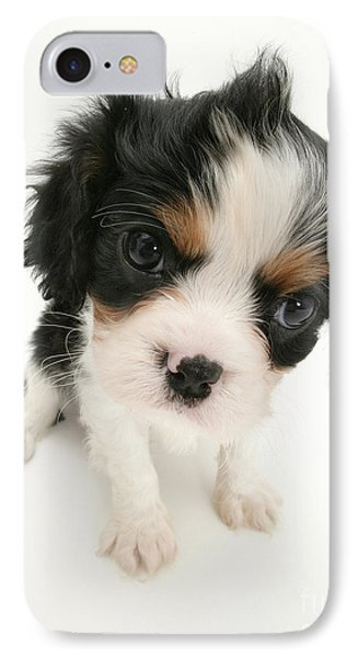 Puppy Phone Case by Jane Burton