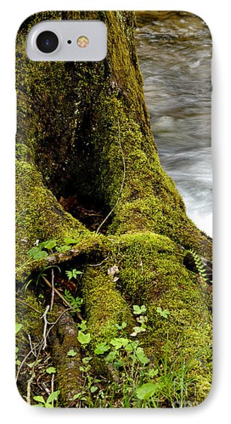 Spring Monongahela National Forest Phone Case by Thomas R Fletcher