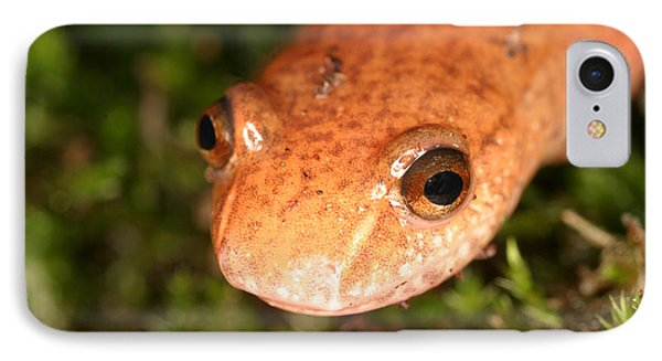 Spring Salamander IPhone 7 Case by Ted Kinsman