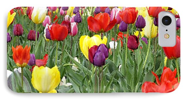 Tulip Garden University Of Pittsburgh  Phone Case by Thomas R Fletcher