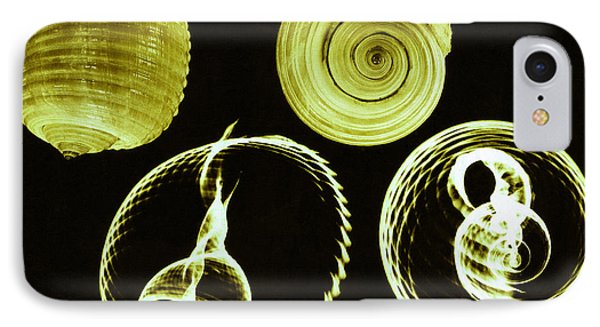 Tun Shell X-ray Phone Case by Photo Researchers