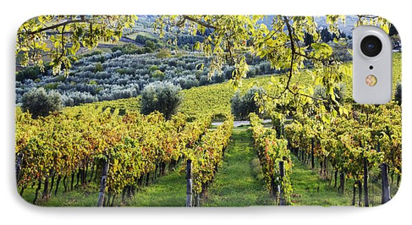 Vineyards And Olive Groves Phone Case by Jeremy Woodhouse