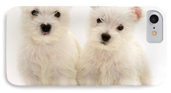 West Highland White Terriers Phone Case by Jane Burton
