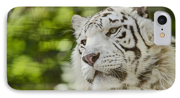 White Tiger IPhone Case by JT Lewis
