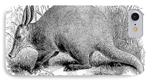 Aardvark Phone Case by Granger