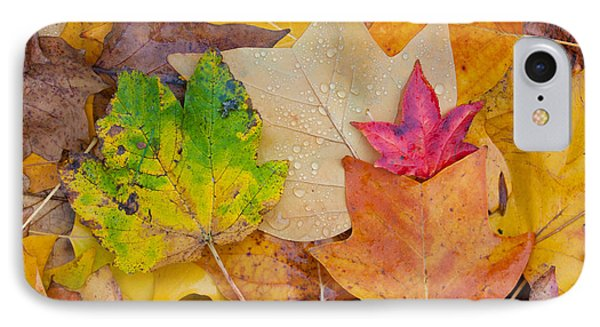 Autumn Leaves Phone Case by Hans Engbers