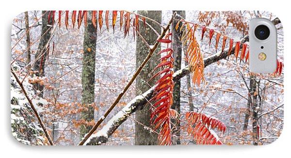 Autumn Snow Monongahela National Forest Phone Case by Thomas R Fletcher