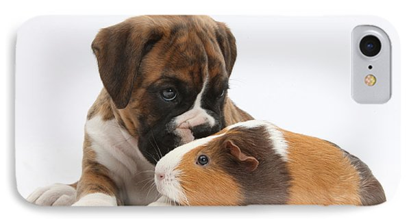 Boxer Puppy And Guinea Pig Phone Case by Mark Taylor