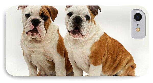 Bulldog Pups Phone Case by Jane Burton