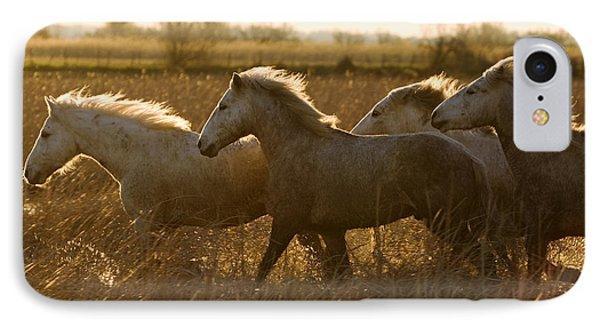 Camargue Horse Equus Caballus Group Phone Case by Konrad Wothe