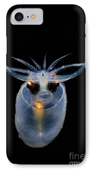 Cockatoo Squid IPhone Case