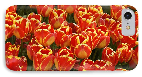 Flaming Tulips Phone Case by Michele Burgess
