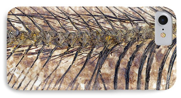 Fossilised Fish Phone Case by Lawrence Lawry