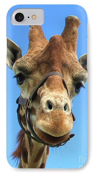 Giraffe Close Up  IPhone Case