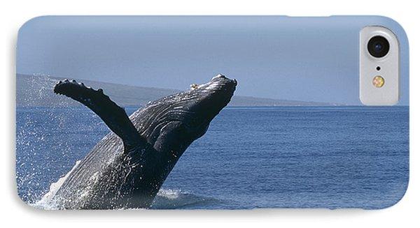 Humpback Whale Breaching Maui Hawaii Phone Case by Flip Nicklin