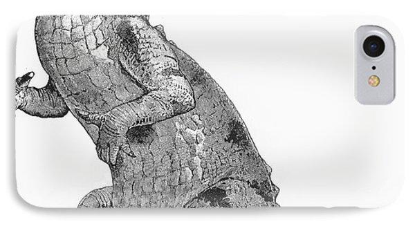 Iguanodon, Mesozoic Dinosaur Phone Case by Science Source