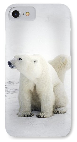 Polar Bear And Cub Phone Case by Chris Martin-bahr
