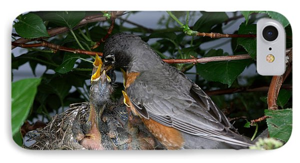 Robin Feeding Its Young IPhone Case by Ted Kinsman