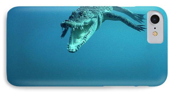 Saltwater Crocodile Crocodylus Porosus Phone Case by Mike Parry