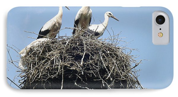 3 Storks In The Nest. Lithuania IPhone Case by Ausra Huntington nee Paulauskaite