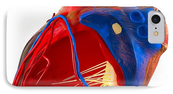Structure Of A Human Heart, Artwork Phone Case by Roger Harris