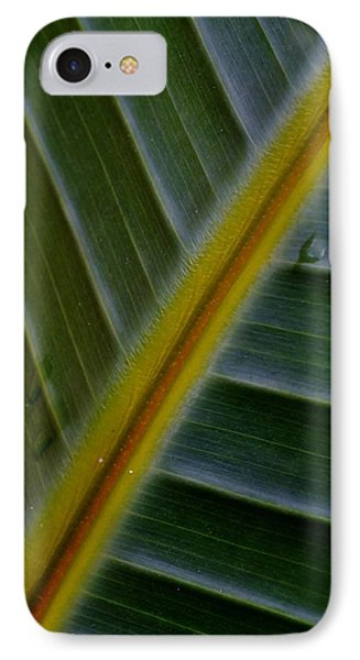 IPhone Case featuring the photograph Wild Banana Leaf by Werner Lehmann
