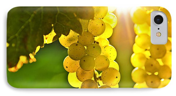 Yellow Grapes IPhone Case by Elena Elisseeva