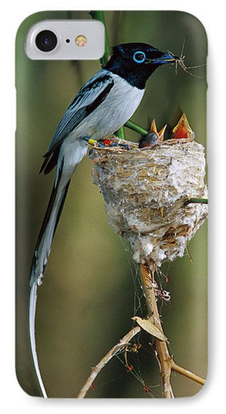 Madagascar Paradise Flycatcher Phone Case by Cyril Ruoso