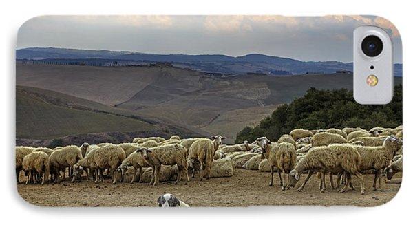 Flock Of Sheep Phone Case by Joana Kruse