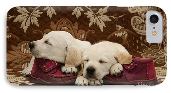 Goldidor Retriever Puppies IPhone Case by Jane Burton