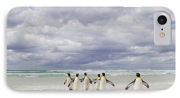 King Penguin Aptenodytes Patagonicus Phone Case by Ingo Arndt