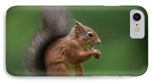 Red Squirrel Phone Case by Andy Astbury