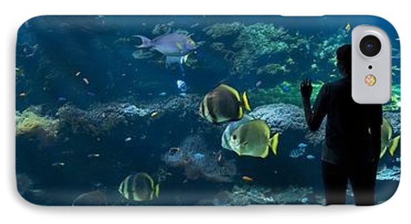 Sea-life Centre, France Phone Case by Alexis Rosenfeld