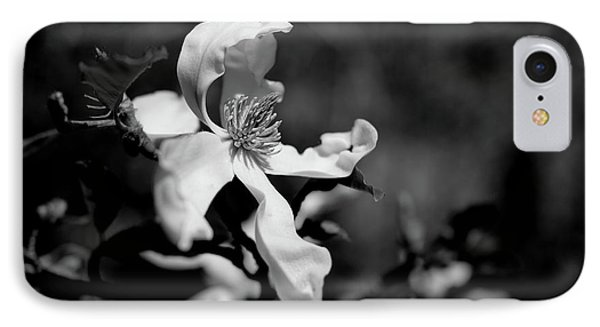 White Magnolia IPhone Case by Dariusz Gudowicz