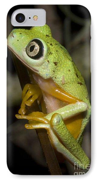 Tree Frog Phone Case by Dante Fenolio