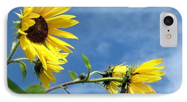 IPhone Case featuring the photograph Sunflowers by France Laliberte