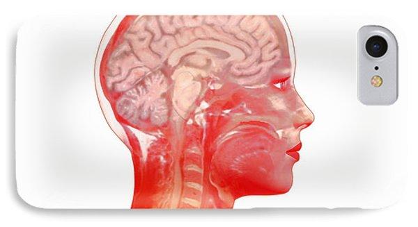 Brain Phone Case by Mehau Kulyk