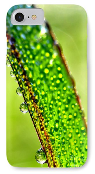 Dewdrops On Lemongrass Phone Case by Thomas R Fletcher