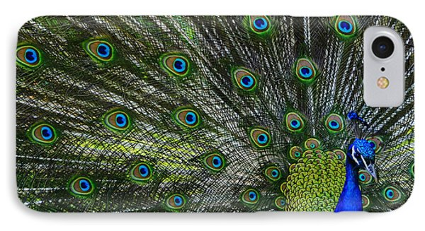 IPhone Case featuring the photograph Peacock by Brian Stevens
