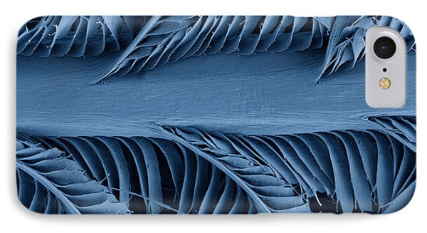 Sem Of Eastern Bluebird Feathers Phone Case by Ted Kinsman