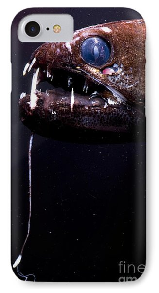 Dragonfish Phone Case by Dante Fenolio