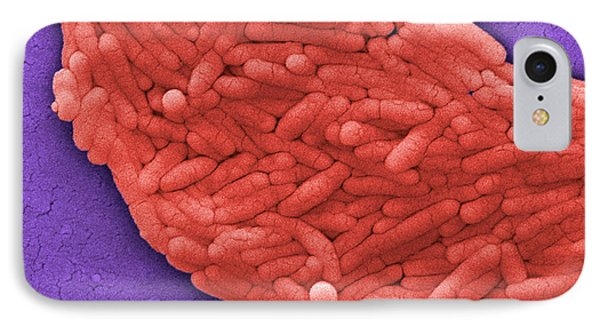 Salmonella, Sem Phone Case by Science Source