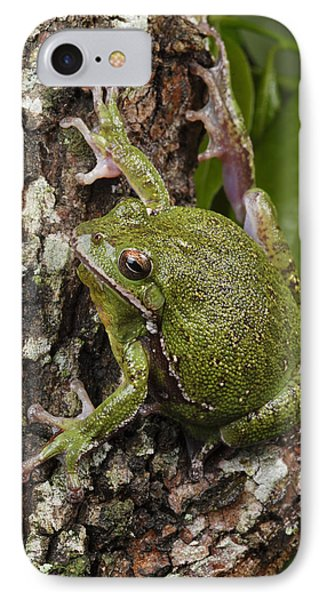 A Barking Treefrog Sits On The Crotch Phone Case by George Grall