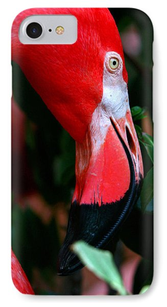 IPhone Case featuring the photograph A Delicate Shade Of Power by Lon Casler Bixby
