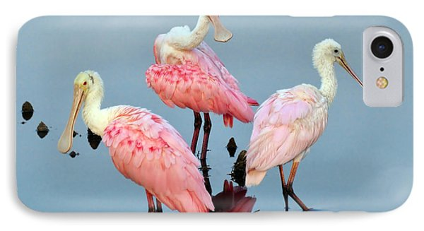 A Family Gathering IPhone Case by Kathy Baccari