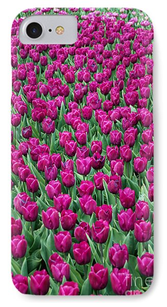 IPhone Case featuring the photograph A Field Of Tulips by Eva Kaufman