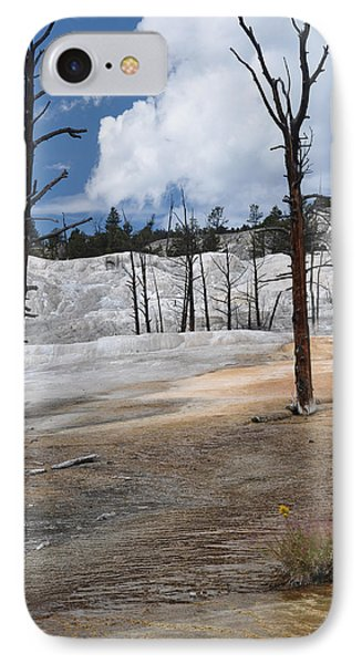 A Flower Blooms In Mammoth Hot Springs IPhone Case