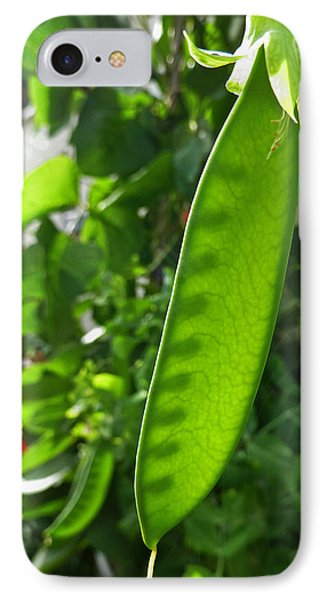 IPhone Case featuring the photograph A Green Womb by Steve Taylor
