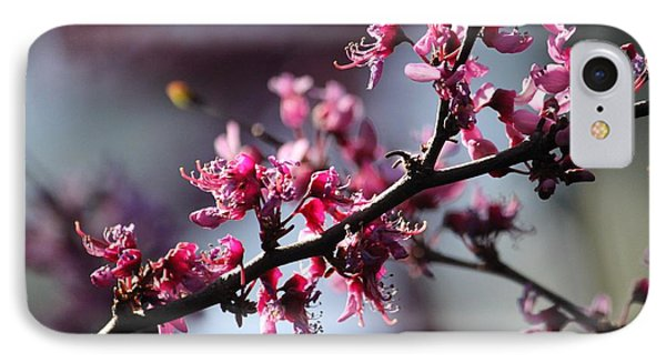 IPhone Case featuring the photograph A Hint Of Spring  by Amy Gallagher