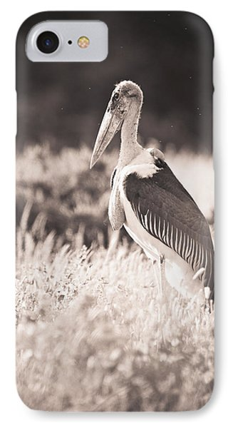 A Large Bird Stands In The Grass Phone Case by David DuChemin